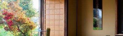 COLORS | 高橋悠眞・靏林舞美 展